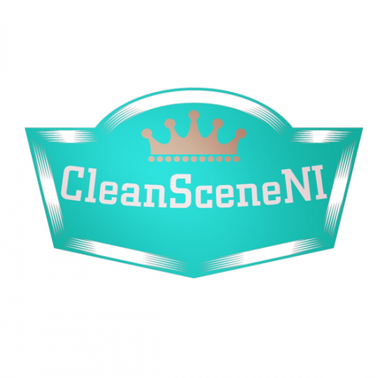 Business Profile: CleanScene NI