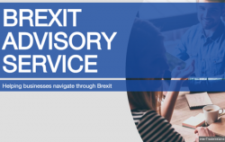 Brexit Advisory Service for Businesses
