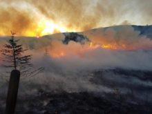 Help Combat Threat of Wildfires