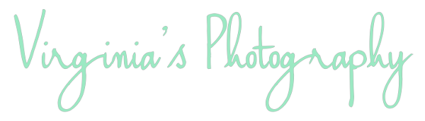 Business Profile: Virginia's Photography