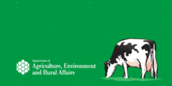 Reports On The Northern Ireland Food And Drinks Processing Sector And The NI Veterinary Sector.